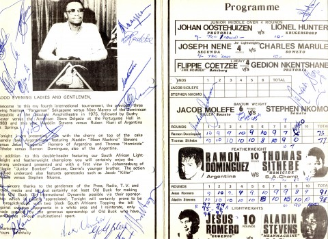 Aladin Stevens vs Jesus Romero - African Ring