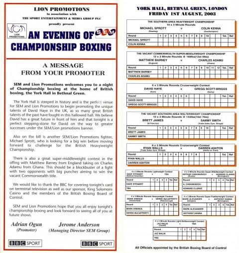 David Haye vs Gregg Scott - African Ring