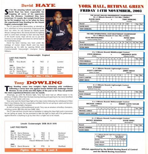 David Haye vs Tony Dowling - African Ring