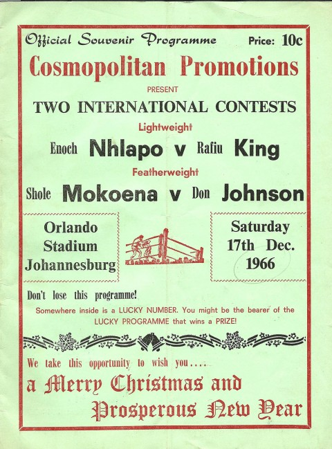 Don Johnson vs Shole Mokoena - African Ring