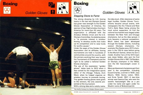 26.Golden Gloves
